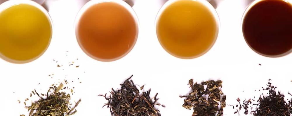 specialty herbal tea shop ohio